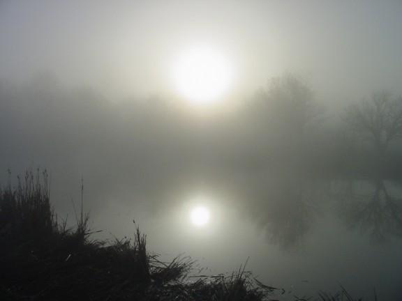 Foggy sunrise on our main pond.